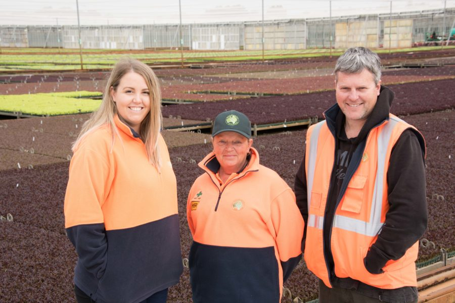 Boomaroo Nurseries Careers